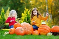 Duas irmãs mais nova bonitas que fingem jogar cilindros ao ter o divertimento em um remendo da abóbora Imagens de Stock Royalty Free