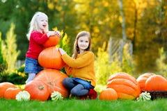 Duas irmãs mais nova bonitas que têm o divertimento junto em um remendo da abóbora Fotos de Stock