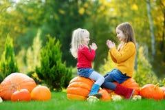 Duas irmãs mais nova bonitas que têm o divertimento junto em um remendo da abóbora Imagens de Stock