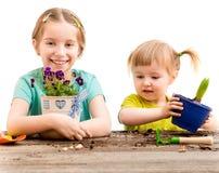 Duas irmãs mais nova são contratadas na jardinagem Fotos de Stock Royalty Free
