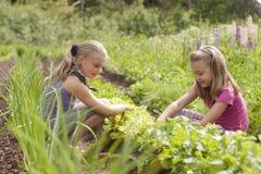 Duas irmãs no jardim Fotos de Stock Royalty Free