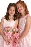 Duas irmãs nupciais cheias fotografia de stock