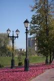 Duas lâmpadas no parque do outono. Imagens de Stock Royalty Free