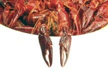 Duas lagostas cozinhadas Imagens de Stock