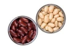 Duas latas de estanho abertas com os feijões cozidos vermelhos e brancos Imagens de Stock Royalty Free