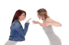 Duas lutas da mulher Fotografia de Stock