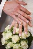 Duas mãos Foto de Stock Royalty Free