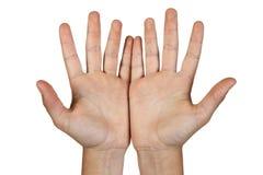 Duas mãos abertas. Imagens de Stock
