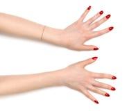 Duas mãos abertas largas da mulher Fotos de Stock Royalty Free