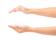 Duas mãos bonitas da mulher isoladas Fotografia de Stock