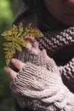 Duas mãos nas luvas que guardam uma folha amarela Imagens de Stock Royalty Free