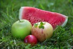 Duas maçãs com ameixas e melancia Imagem de Stock Royalty Free