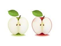 Duas maçãs cortadas Fotografia de Stock