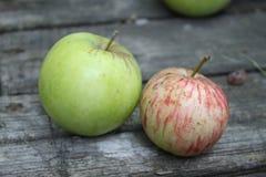 Duas maçãs frescas na tabela imagens de stock
