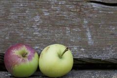 Duas maçãs maduras Foto de Stock Royalty Free