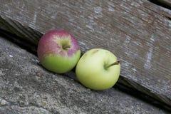 Duas maçãs maduras Fotografia de Stock Royalty Free