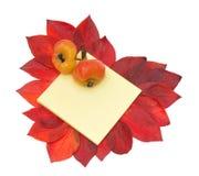 Duas maçãs no caderno e no coração das folhas vermelhas Imagens de Stock