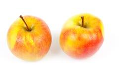 Duas maçãs suculentas com gotas da água Imagens de Stock