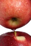 Duas maçãs vermelhas com as gotas da água autônomas Imagem de Stock