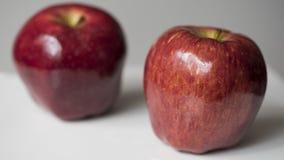 Duas maçãs vermelhas no fundo branco Fotografia de Stock