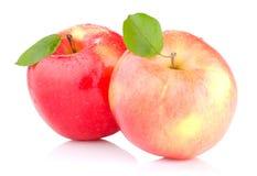 Duas maçãs vermelhas com folhas e gotas da água Foto de Stock Royalty Free