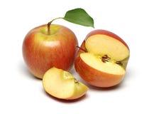 Duas maçãs frescas Imagens de Stock Royalty Free