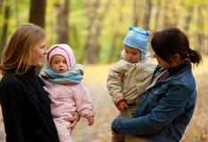 Duas matrizes com seus bebês Imagem de Stock