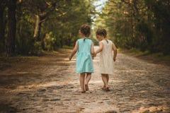 Duas meninas bonitas que andam nas madeiras Fotografia de Stock