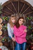 Duas meninas bonitas que levantam em decorações do Natal Imagem de Stock