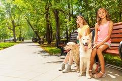 Duas meninas com os cães que sentam-se no parque no banco Imagens de Stock