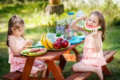 Duas meninas comem o fruto em um piquenique do verão Foto de Stock