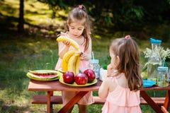 Duas meninas comem o fruto em um piquenique do verão Fotografia de Stock