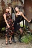 Duas meninas da forma Imagens de Stock Royalty Free