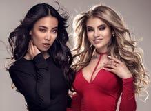 Duas meninas elegantes que levantam junto Fotografia de Stock Royalty Free
