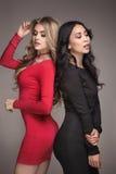 Duas meninas elegantes que levantam junto Foto de Stock