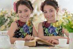 Duas meninas em vestidos florais Fotografia de Stock
