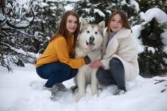 Duas meninas estão abraçando o Malamute do Alasca do cão na floresta do inverno foto de stock