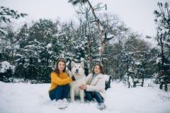 Duas meninas estão sentando-se na neve ao lado de um Malamute do Alasca do cão e abraçam o seu na floresta do inverno imagens de stock royalty free