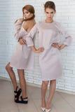 Duas meninas felizes à moda 'sexy' bonitas no vestido elegante bege que levanta no estúdio Fotos de Stock Royalty Free
