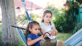Duas meninas felizes que têm o divertimento fora, balançando na rede com dois coelhos bonitos filme