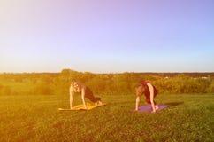 Duas meninas louros novas nos esportes serem a ioga da prática em um monte verde pitoresco no ar livre na noite foto de stock