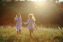 Duas meninas na roupa ucraniana nacional com as grinaldas do fluxo Imagens de Stock Royalty Free