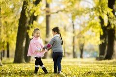 Duas meninas no parque do outono Foto de Stock Royalty Free