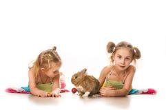 Duas meninas que jogam com coelhinho da Páscoa em um fundo branco Imagem de Stock Royalty Free