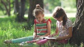Duas meninas sob a árvore que apreciam o dia ensolarado e o livro de leitura uma irmã mais idosa lê um livro a sua irmã mais nova vídeos de arquivo