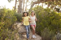 Duas moças de sorriso que correm em uma floresta no sol fotografia de stock