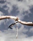 Duas mãos em uma luta Imagens de Stock Royalty Free