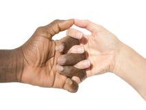 Duas mãos que simbolizam a diversidade do mundo Imagem de Stock