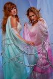 Duas mulheres bonitas do duende na floresta mágica Imagem de Stock Royalty Free