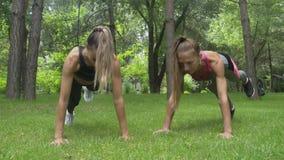 Duas mulheres bonitas novas estão fazendo o exercício no parque, exercício da prancha dos modelos da aptidão video estoque
